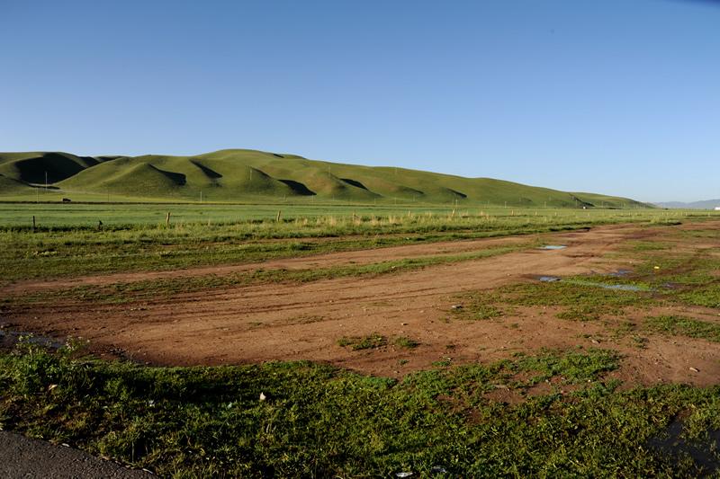夏河桑科草原