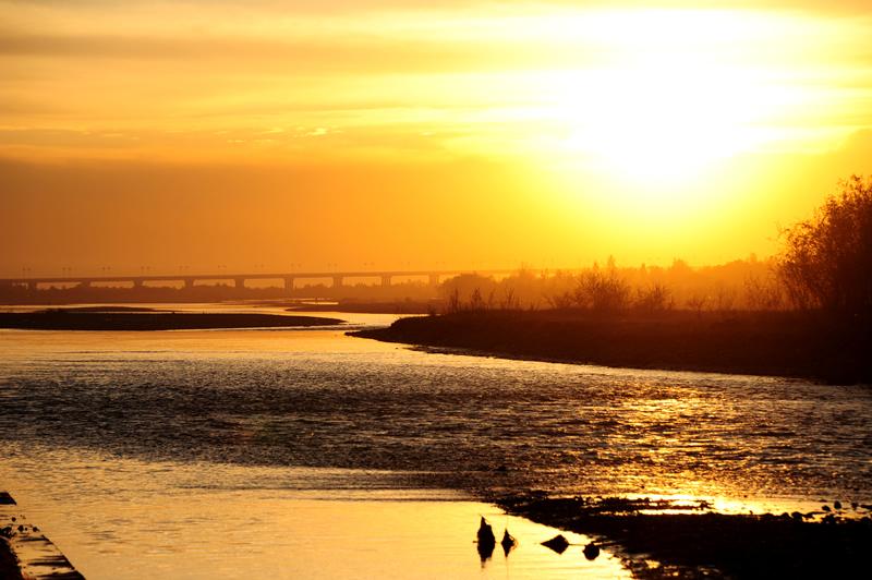 伊犁河日落